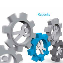 Broschüre Reports